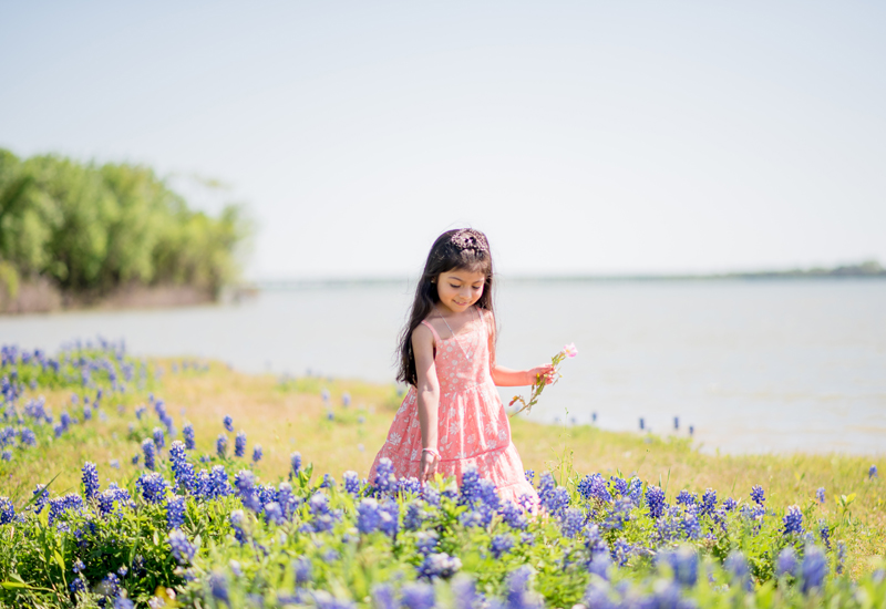 cowboy in bluebonnets